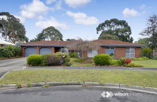 11 Sunset Place, Traralgon VIC 3844