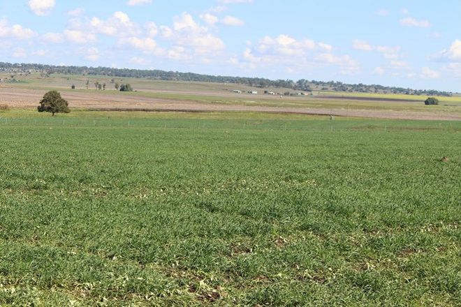 Picture of Lot 7 Henningsen Road, OAKEY QLD 4401