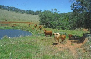 Picture of Evelyn QLD 4888