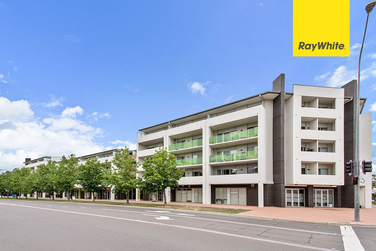 223/142 Anketell Street, Greenway ACT 2900, Image 1