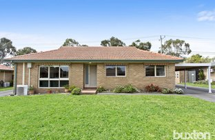 Picture of 6/270 Spring Road, Dingley Village VIC 3172