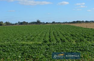 Picture of Lot 1 Scanlons Drain Road, Catani VIC 3981
