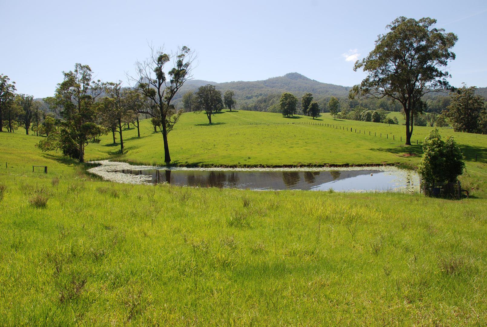 149 Jack Smiths Road, Brays Creek NSW 2484, Image 1