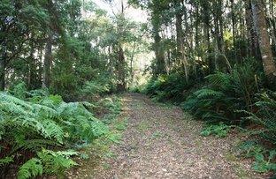 Picture of P1551+ St Columba Falls Road, Pyengana TAS 7216