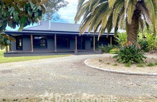 Picture of 17 Laurina Drive, Darawank NSW 2428
