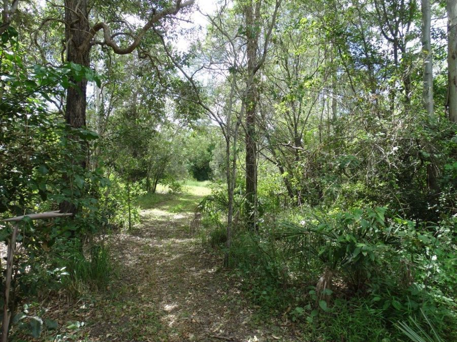 Lot 2 Walkers Crossing road, Mount Maria QLD 4674, Image 2