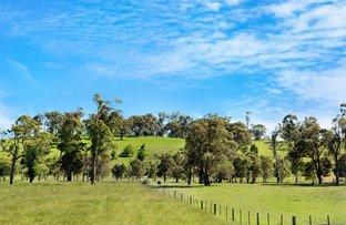 Picture of 5910 Illawarra Highway, Avoca NSW 2577