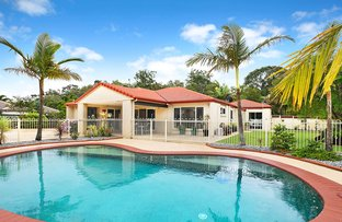 Picture of 61 Koala Court, Little Mountain QLD 4551
