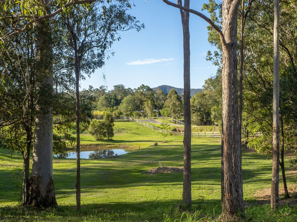 16 Davison Road, Camp Mountain QLD 4520, Image 1