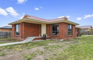 Picture of 49 Burrows Avenue, Brighton TAS 7030