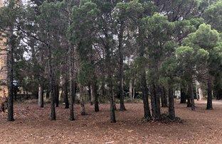 Picture of 5 GEORGE Street, Coochiemudlo Island QLD 4184