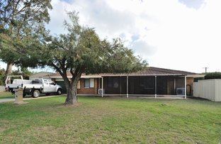 Picture of 3 Almond Place, Shoalwater WA 6169