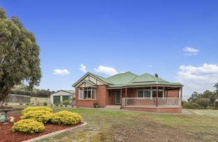 Picture of 20 Raffan Road, Honeywood TAS 7017