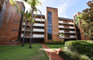 Picture of 31/3-7 Peel Street, Tuncurry NSW 2428
