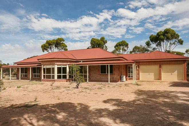 Picture of 124 Champion St, KADINA SA 5554