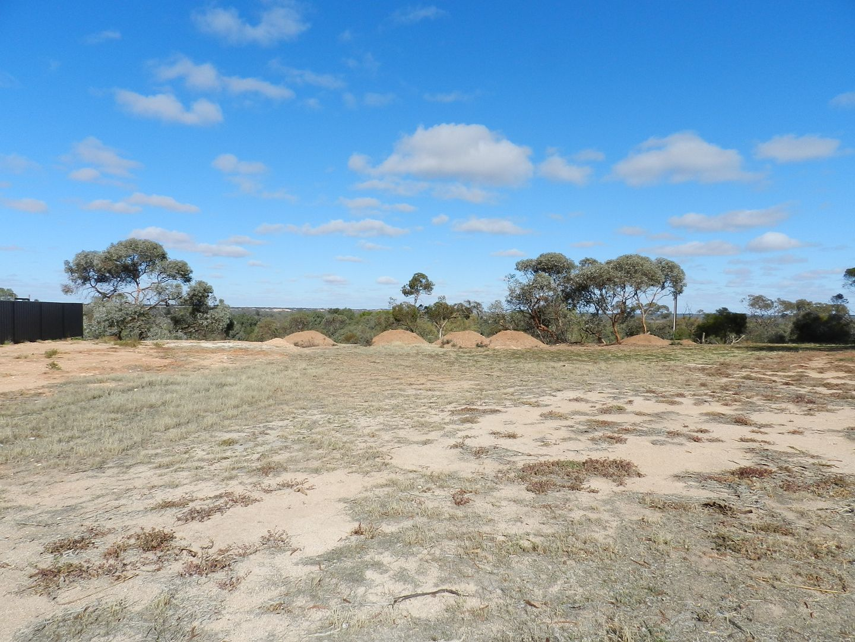 Section 1419, Old Sturt Highway, Berri SA 5343, Image 2