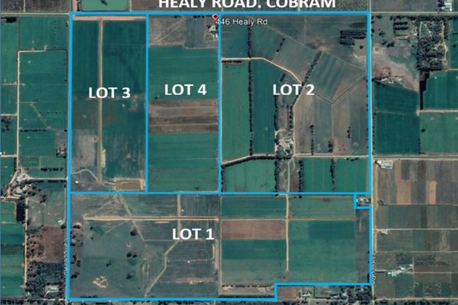 Picture of 446 Healy Road, COBRAM VIC 3644