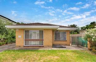 Picture of 1/7 Musgrave, West Hindmarsh SA 5007