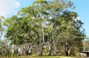 Picture of Lot 52 Henry Martin Road, Ashbourne SA 5157