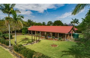 Picture of 4 Sunny Valley Place, Modanville NSW 2480