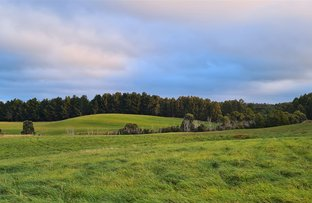 Picture of 1418 Upper Natone Road, Upper Natone TAS 7321