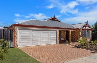 Picture of 14 Lissadell Terrace, Ellenbrook WA 6069