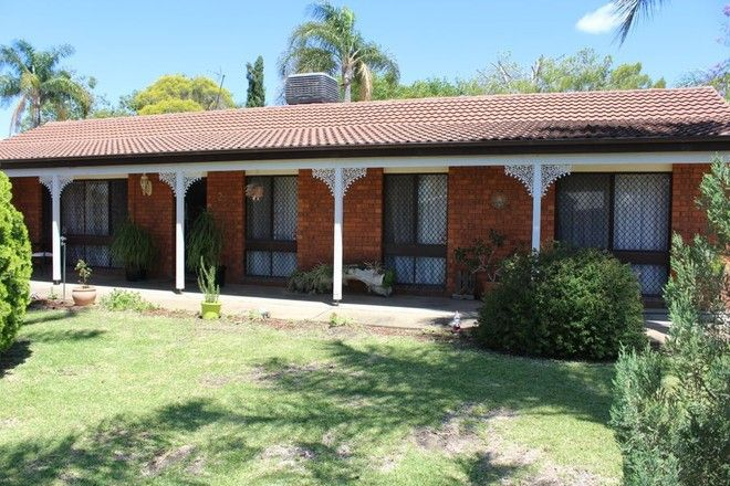 Picture of 29 Boland Drive, MOREE NSW 2400