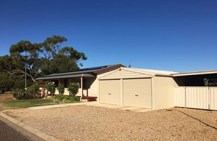 Picture of 6 Arno Bay Rd, Cleve SA 5640