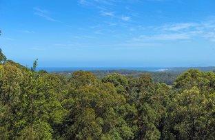 Picture of Lot 702 Bowerbird Lane, Valla NSW 2448