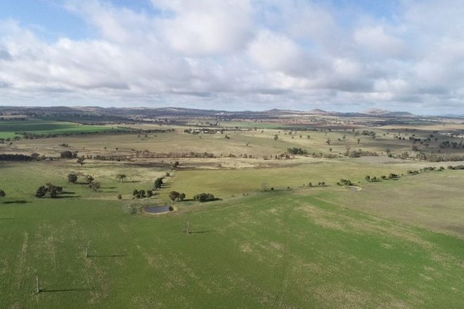 Picture of 945 Galong Road, GALONG NSW 2585