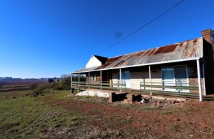Picture of 2453 Old Cootamudra Road, Temora NSW 2666
