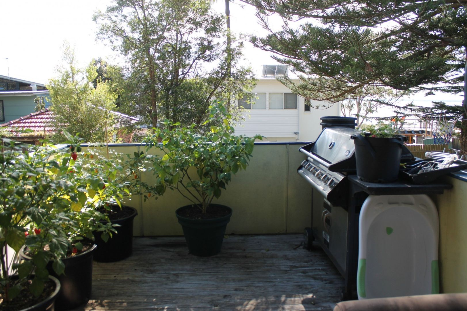 104 Government Road, Nelson Bay NSW 2315, Image 2