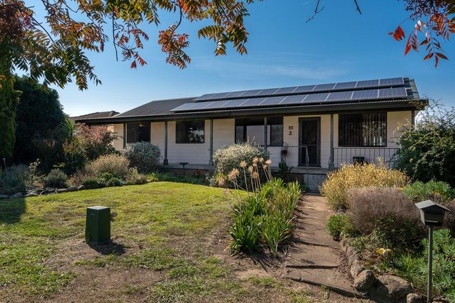 Picture of 80 Gidley Street, MOLONG NSW 2866