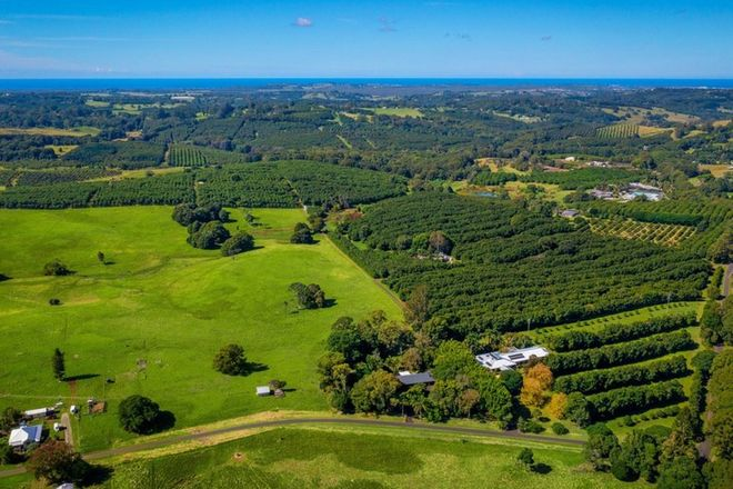 Picture of 10 Kirklands Lane, FERNLEIGH NSW 2479