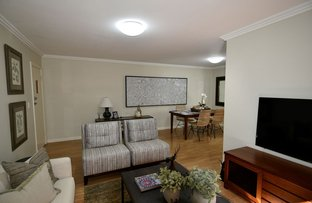 Picture of 4/1 Cammeray Ave, Cammeray NSW 2062