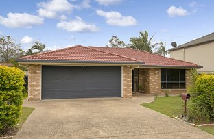 Picture of 13 Kakadu Close, Riverhills QLD 4074