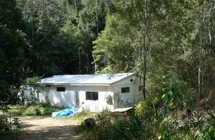 Picture of 1243 Kalang Road, Bellingen NSW 2454
