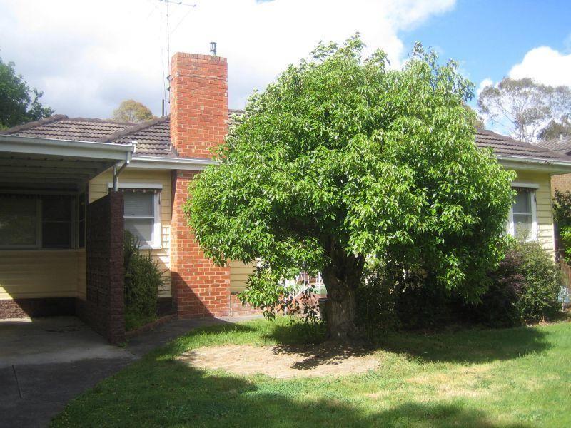 20 Barwon Street, Box Hill North VIC 3129, Image 0