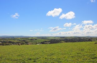 Picture of Lot 27 Boundary Rd, Boston SA 5607
