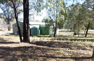 1657 Kangarooby Road, Gooloogong NSW 2805