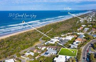Picture of 320 David Low Way, Peregian Beach QLD 4573