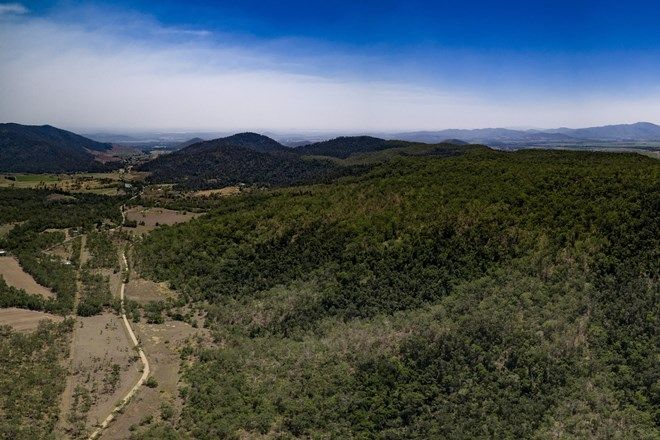 Picture of 3412 Mirani-Mount Ossa Road, MOUNT OSSA QLD 4741