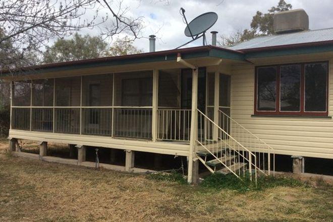 Picture of 31 Cowildi Street, DIRRANBANDI QLD 4486
