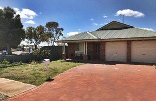1 Lady Mary Drive, West Wyalong NSW 2671