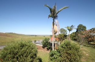 Picture of 9 Hillside Dr, Fairy Hill NSW 2470