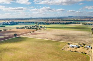 Picture of 893 Conimbla Road, Cowra NSW 2794