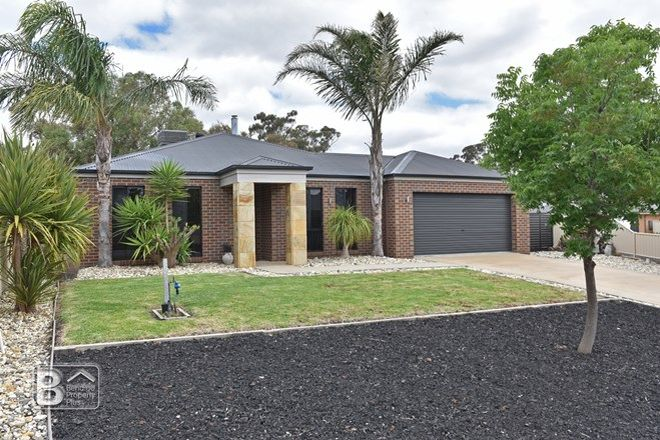 Picture of 6 Jean Court, MARONG VIC 3515