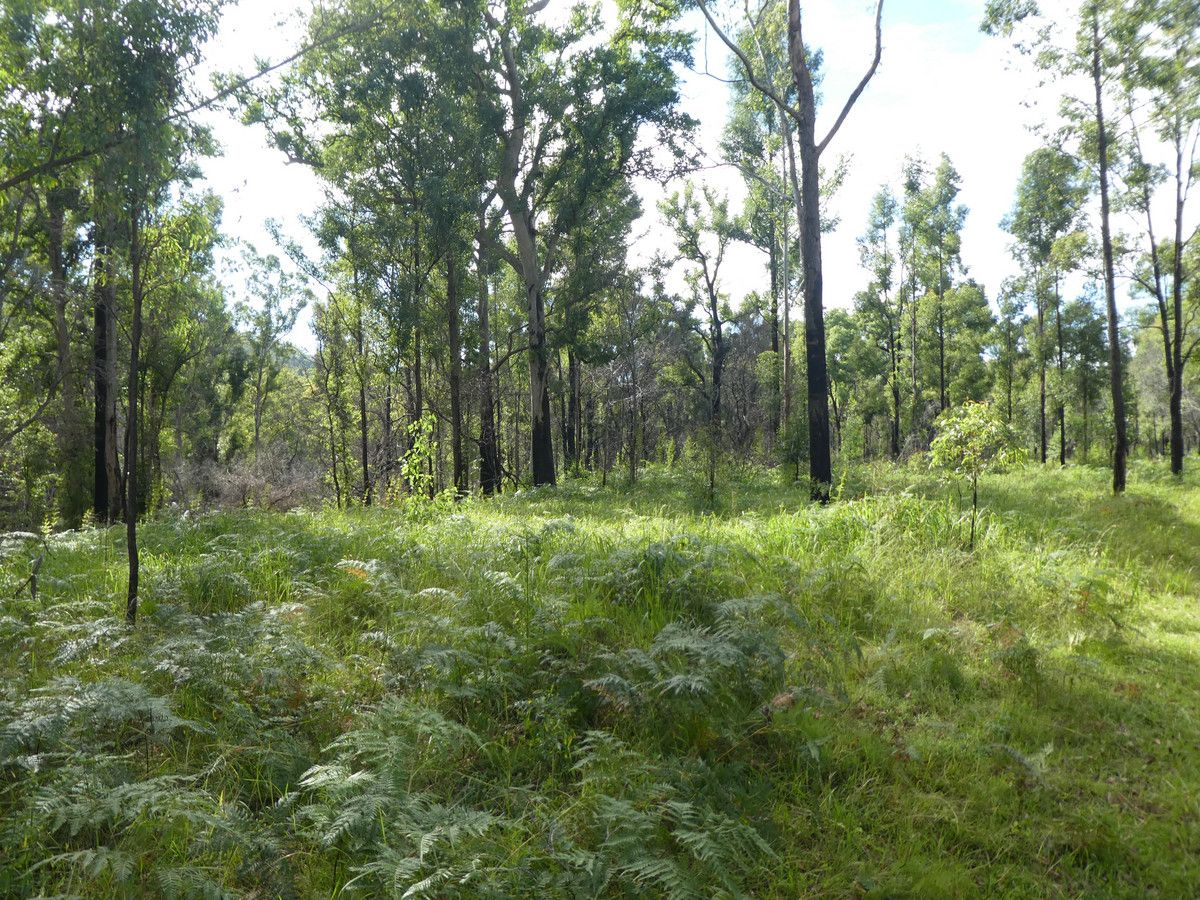 876 Phillips Swamp Road, Busbys Flat NSW 2469, Image 0