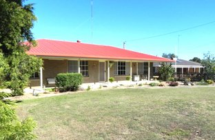 Picture of 20 Gore Street, Westbrook QLD 4350