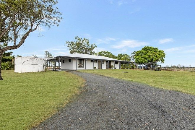 Picture of 81 Greens Road, ALTON DOWNS QLD 4702